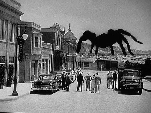 tarantula monstre festival 2014 spoutnik