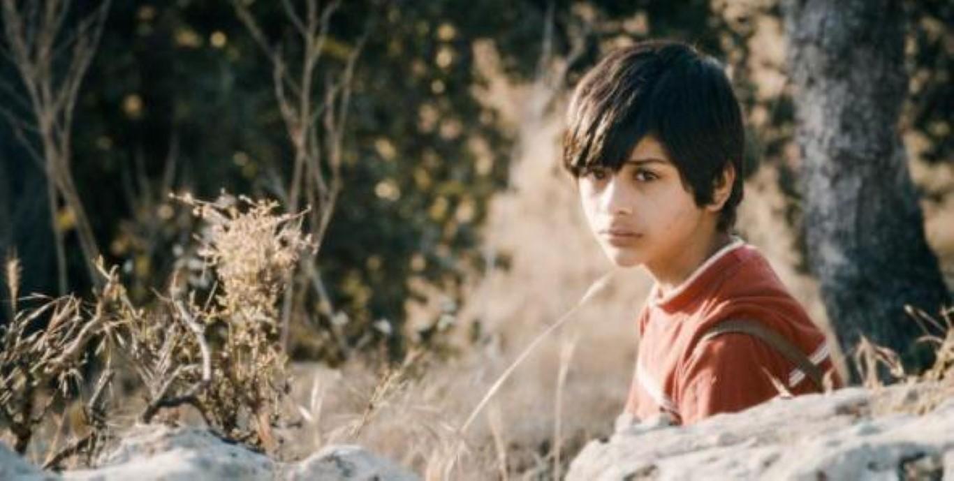 when i saw you palestine filmer c'est exister 2014 spoutnik