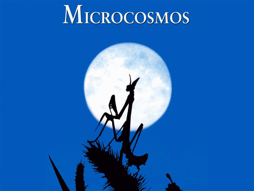 microcosmos spoutnik