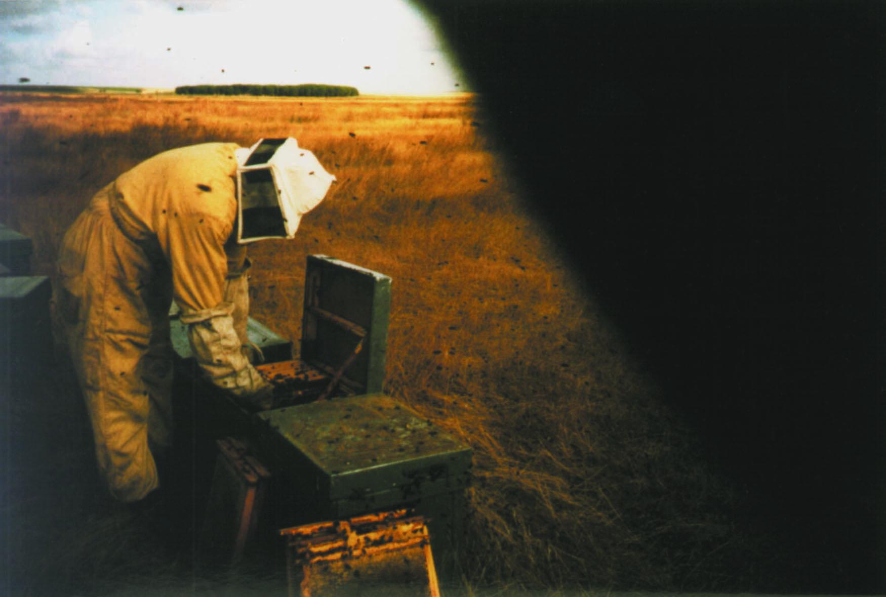 oliva oliva peter hoffman cinéma spoutnik
